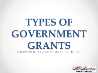 Types of Government and Federal Grants