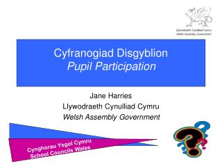 Cyfranogiad Disgyblion Pupil Participation