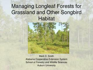Managing Longleaf Forests for Grassland and Other Songbird Habitat