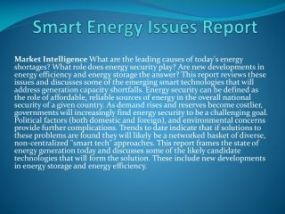 Smart Energy Issues Report