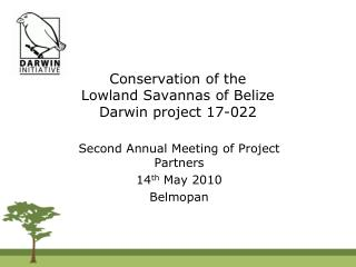 Conservation of the  Lowland Savannas of Belize Darwin project 17-022
