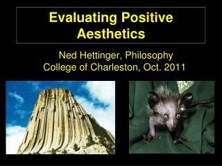 Evaluating Positive Aesthetics
