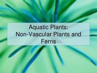 Aquatic Plants: Non-Vascular Plants and Ferns
