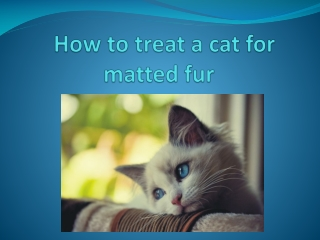 how to treat acat for matted