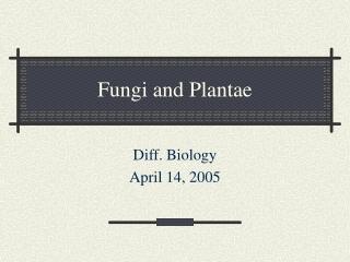 Fungi and Plantae
