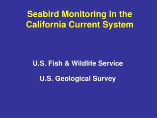 Seabird Monitoring in the California Current System