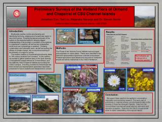 Preliminary Surveys of the Wetland Flora of Ormond and Chaparral of CSU Channel Islands Jonathan Cox, Ted Liu, Alejandra