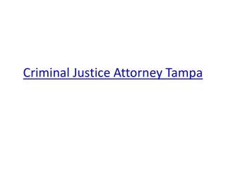 Criminal Justice Attorney Tampa