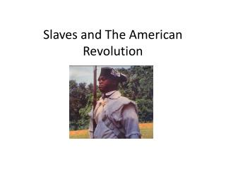 Slaves and The American Revolution