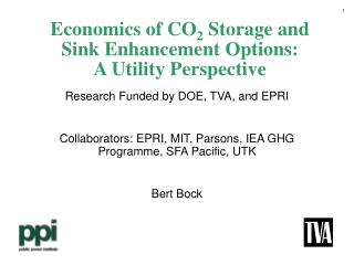 Economics of CO 2  Storage and Sink Enhancement Options: A Utility Perspective