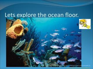 Lets explore the ocean floor.