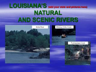 LOUISIANA S add your state and pictures here NATURAL AND SCENIC RIVERS