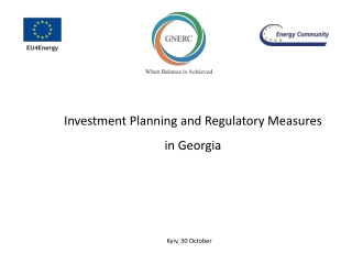Investment Planning and Regulatory Measures in Georgia