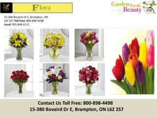 Brampton Florist - Flowers Brampton, ON,|Flora All Occasions