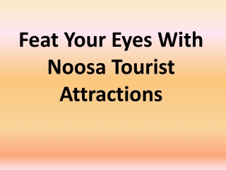 Feat Your Eyes With Noosa Tourist Attractions