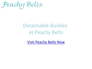 Belts with Detachable Buckles at Peachy Belts