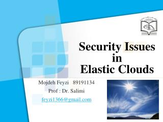 Security Issues in  Elastic Clouds