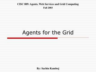 Agents for the Grid