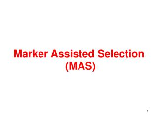 Marker Assisted Selection  (MAS)