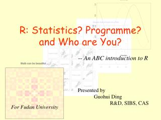 R: Statistics? Programme? and Who are You?