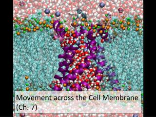 Movement across the Cell Membrane Ch. 7