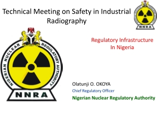 Technical Meeting on Safety in Industrial Radiography