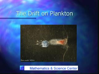 The Drift on Plankton