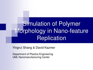 Simulation  of Polymer Morphology in Nano-feature Replication