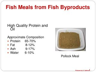 Fish Meals from Fish Byproducts