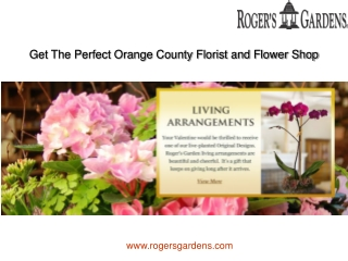Get The Perfect Orange County Florist and Flower Shop