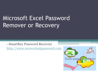 Microsoft Exccel Password Remover or Recovery