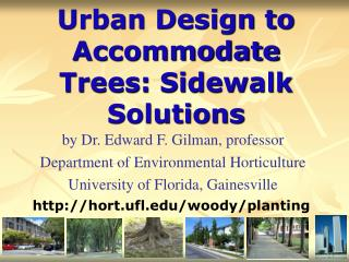 Urban Design to Accommodate Trees: Sidewalk Solutions