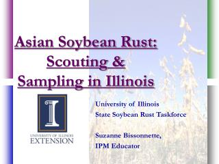 Asian Soybean Rust: Scouting  Sampling in Illinois