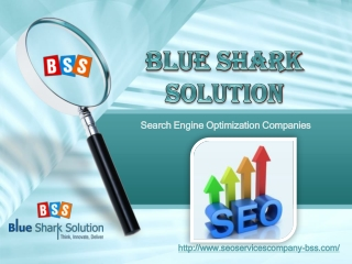 SEO expert services, SEO services firm, SEO outsourcing services