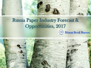 Russia Paper Industry Forecast & Opportunities, 2017