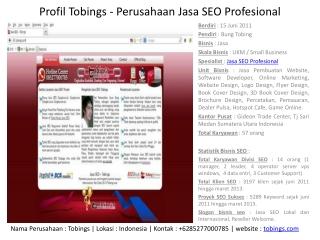 Profil Tobings - Perusahan Jasa SEO Profesional
