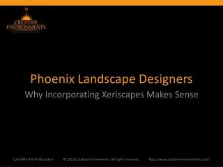 Phoenix Landscape Designers: Why Incorporating Xeriscapes Ma