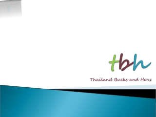 Thailand parties