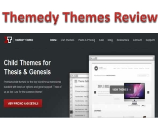 Themedy Themes Review