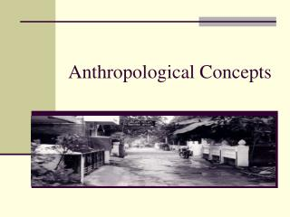 Anthropological Concepts