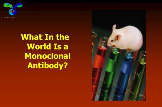 What In the World Is a Monoclonal Antibody?