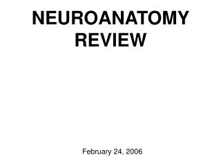 NEUROANATOMY REVIEW