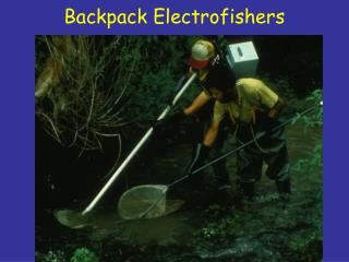 Backpack Electrofishers