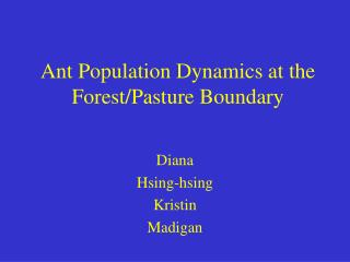Ant Population Dynamics at the Forest/Pasture Boundary