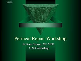 Perineal Repair Workshop