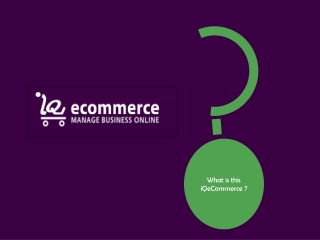 iQeCommerce shopping cart software for small business owners
