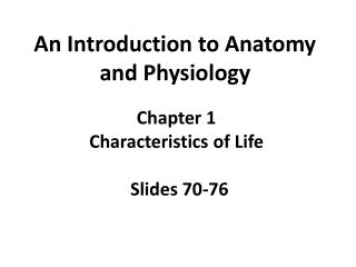 An Introduction to Anatomy and Physiology
