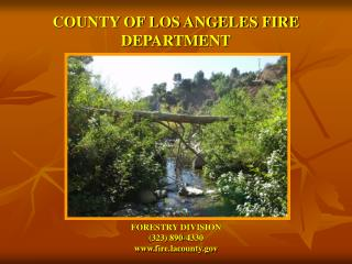 COUNTY OF LOS ANGELES FIRE DEPARTMENT