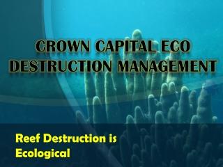 Reef Destruction is Ecological