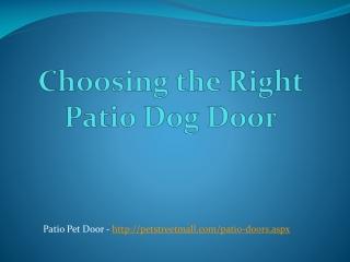Choosing the Right Patio Dog Door